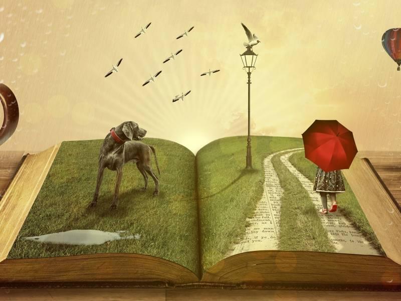 a magic story book